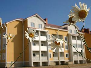 Цветы и дом