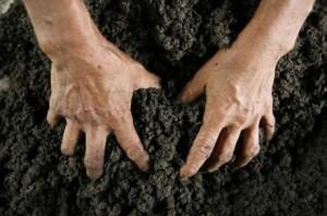 Самозахват земли