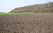 Что такое земельный пай и для чего он нужен?