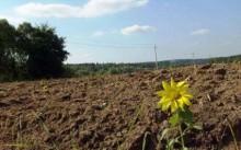 Что такое единое землепользование?