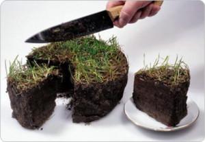 Искусственный торт из земли